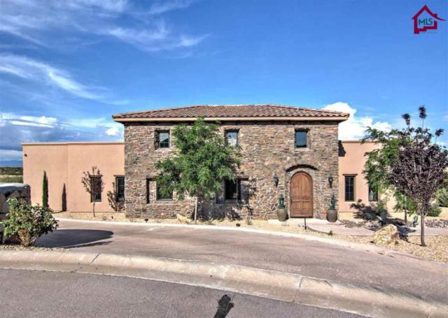 1310 Chimenea Place, Las Cruces, NM 88007 (MLS #1702187) :: Steinborn & Associates Real Estate