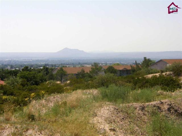 0 Jupiter Road, Las Cruces, NM 88012 (MLS #1702597) :: Steinborn & Associates Real Estate