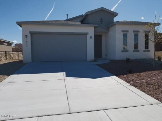 3811 Ringneck Drive, Las Cruces, NM 88011 (MLS #1703391) :: Steinborn & Associates Real Estate