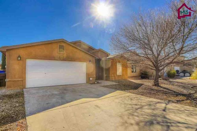 2837 Meriwether Street, Las Cruces, NM 88007 (MLS #1800086) :: Steinborn & Associates Real Estate