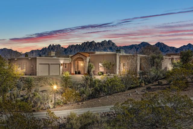 780 Loma Verde Lane, Las Cruces, NM 88011 (MLS #1807978) :: Steinborn & Associates Real Estate