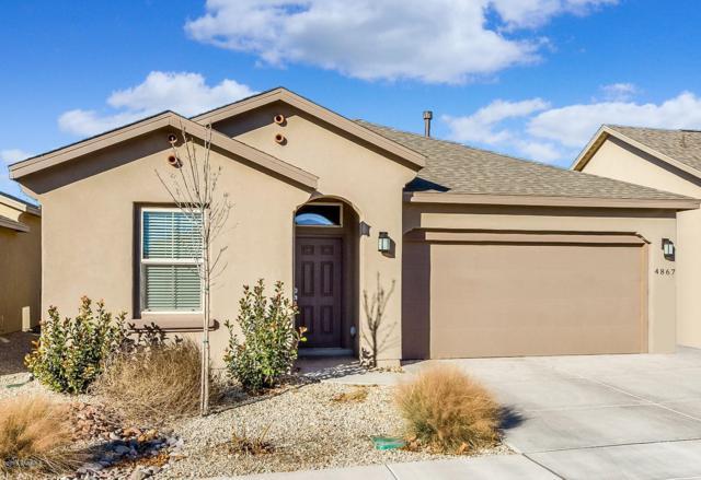 4867 Villeta Avenue, Las Cruces, NM 88011 (MLS #1808310) :: Steinborn & Associates Real Estate