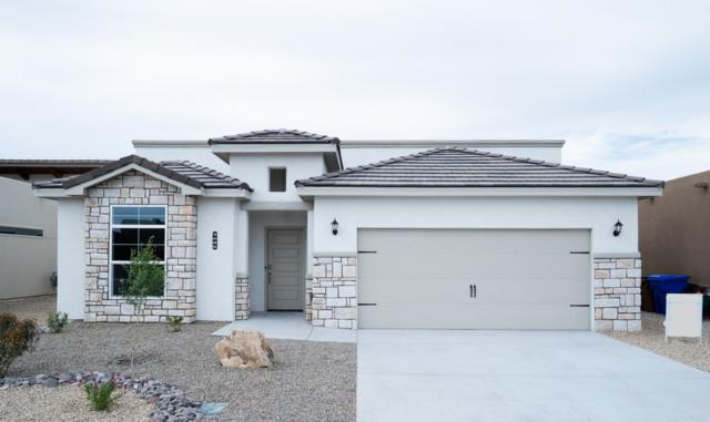 3685 W Maya Court, Las Cruces, NM 88012 (MLS #1900878) :: Steinborn & Associates Real Estate