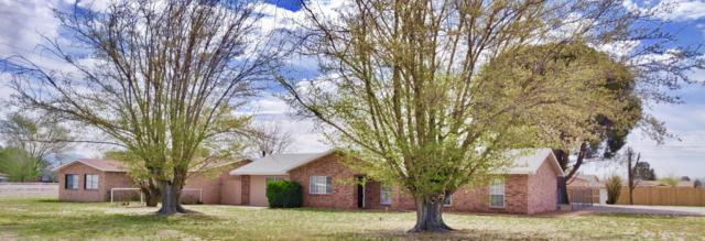 925 W Thorpe Road, Las Cruces, NM 88007 (MLS #1900963) :: Steinborn & Associates Real Estate