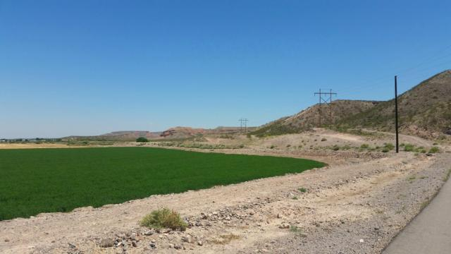 0000 Spring Canyon Road, Hatch, NM 87937 (MLS #1403190) :: Steinborn & Associates Real Estate