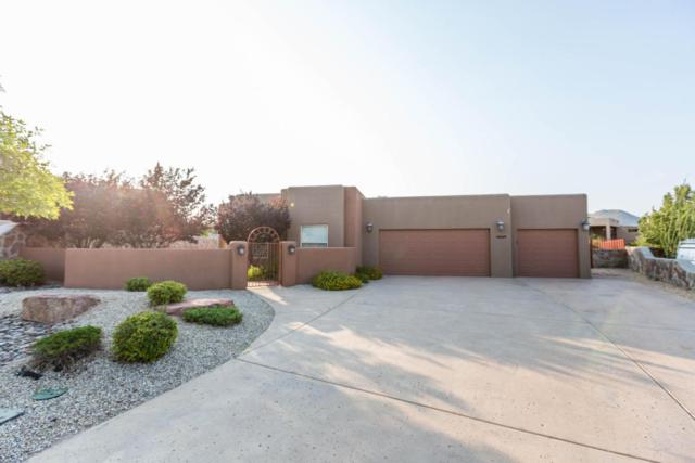 10029 Contana Court, Las Cruces, NM 88007 (MLS #1701949) :: Steinborn & Associates Real Estate