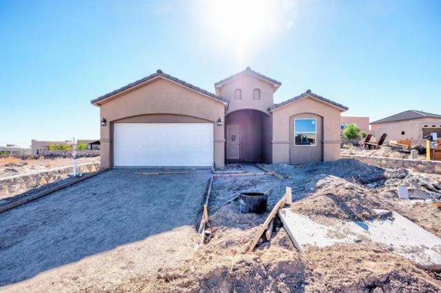 1959 Pella Court, Las Cruces, NM 88011 (MLS #1800251) :: Steinborn & Associates Real Estate