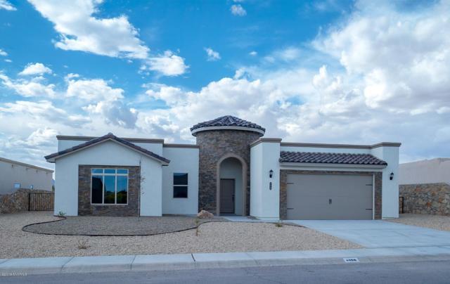 4669 Mesa Rico Drive, Las Cruces, NM 88011 (MLS #1900161) :: Steinborn & Associates Real Estate
