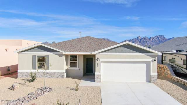 5906 Big Jim Drive, Las Cruces, NM 88012 (MLS #1902660) :: Steinborn & Associates Real Estate