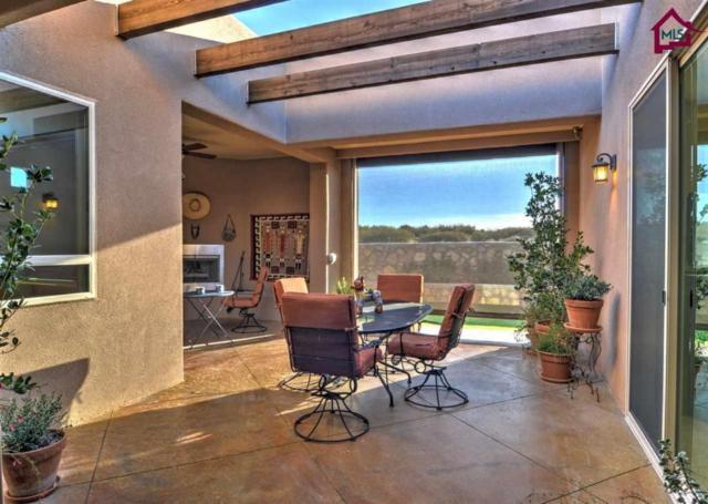 8145 Willow Bloom Circle, Las Cruces, NM 88007 (MLS #1703438) :: Steinborn & Associates Real Estate
