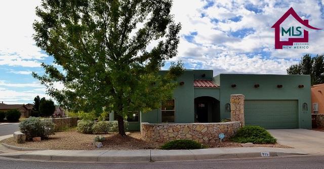 935 Flora Vista Drive, Las Cruces, NM 88001 (MLS #1702858) :: Steinborn & Associates Real Estate