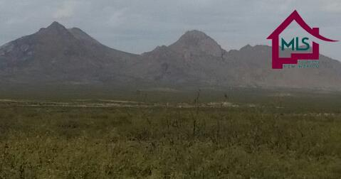 000 Salina Road, Las Cruces, NM 88012 (MLS #1703015) :: Steinborn & Associates Real Estate