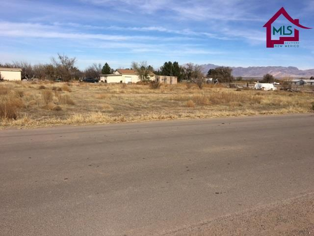 2020 Archer Farm Road, La Mesa, NM 88044 (MLS #1703429) :: Steinborn & Associates Real Estate