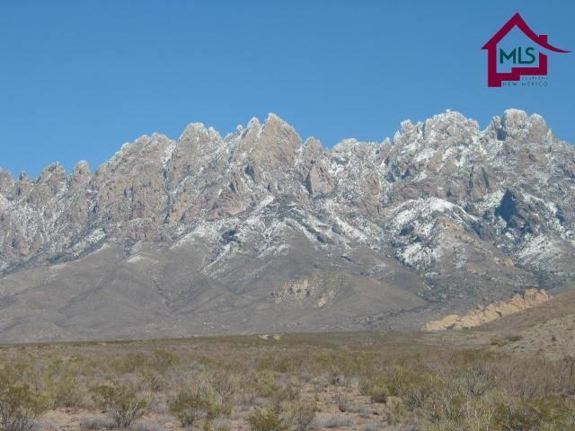 5093 Catamount Drive, Las Cruces, NM 88011 (MLS #1805030) :: Steinborn & Associates Real Estate