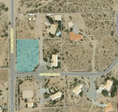 15115 Los Vaqueros Drive, Las Cruces, NM 88011 (MLS #1805079) :: Steinborn & Associates Real Estate