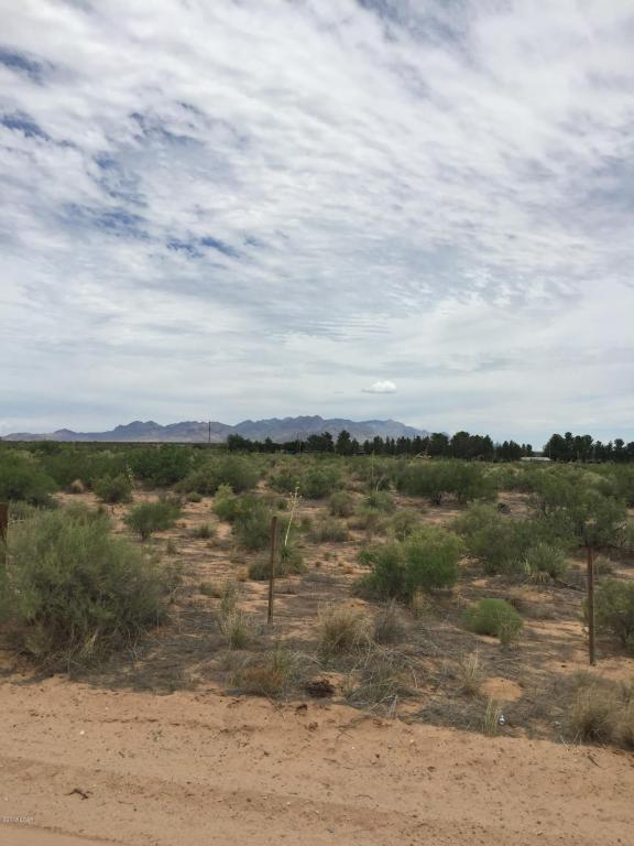 2750 Redstone, Chaparral, NM 88081 (MLS #1805238) :: Steinborn & Associates Real Estate