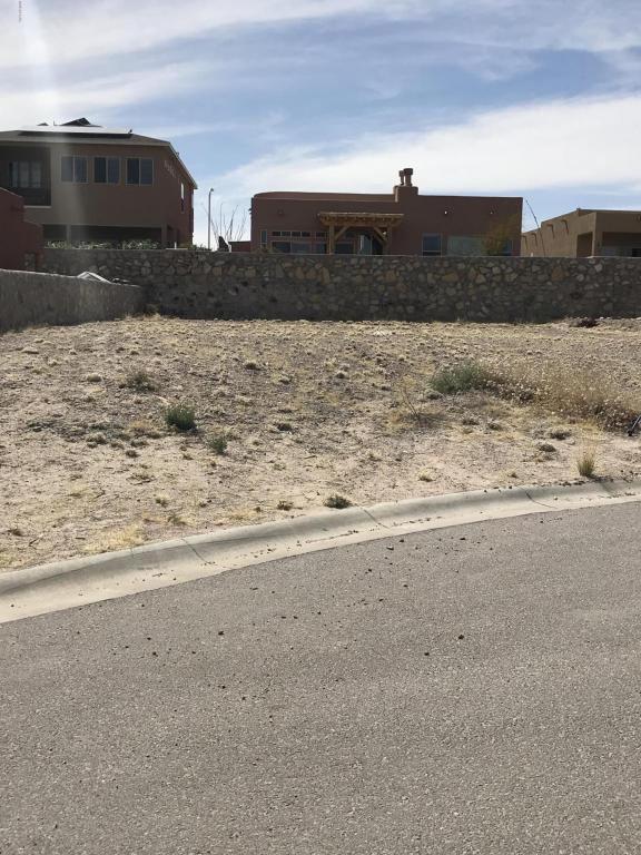 3915 Agua Azul Court, Las Cruces, NM 88012 (MLS #1805655) :: Steinborn & Associates Real Estate