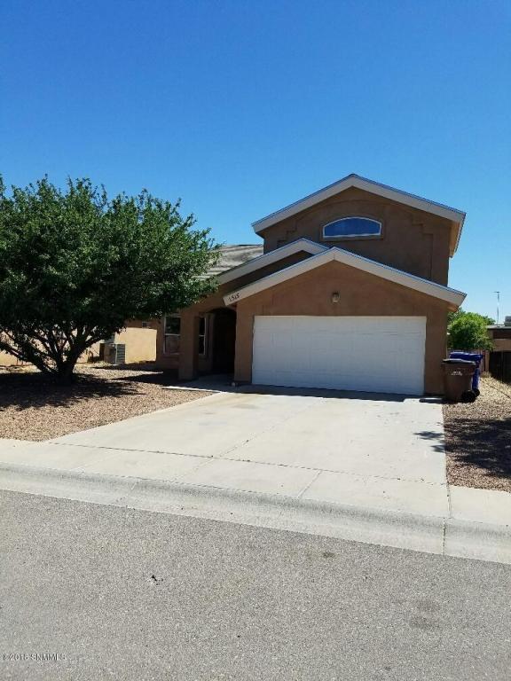 1315 Fountain Loop, Las Cruces, NM 88007 (MLS #1805771) :: Steinborn & Associates Real Estate
