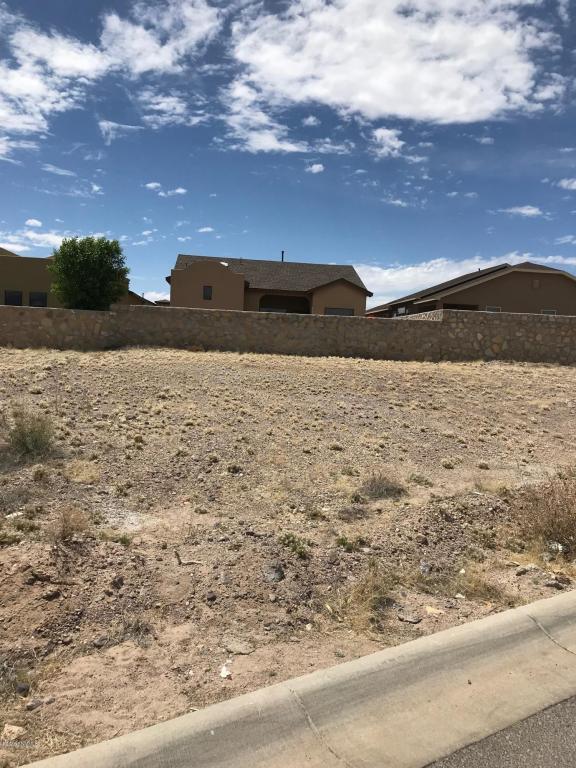 3969 Agua Caliente Drive, Las Cruces, NM 88012 (MLS #1805918) :: Steinborn & Associates Real Estate