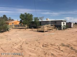 381 Luminous Lane, Chaparral, NM 88081 (MLS #1806012) :: Steinborn & Associates Real Estate