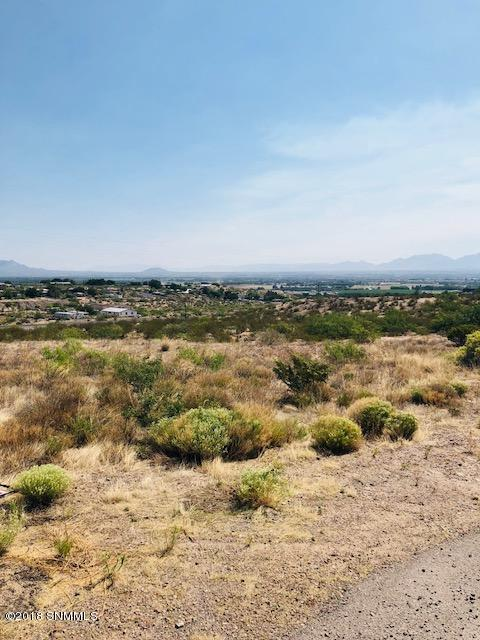 6010 Dry Canyon Road, Las Cruces, NM 88007 (MLS #1806524) :: Steinborn & Associates Real Estate
