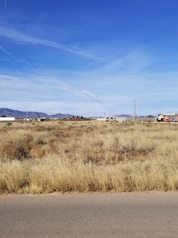 140 Stephanie Drive, Chaparral, NM 88081 (MLS #1806742) :: Steinborn & Associates Real Estate