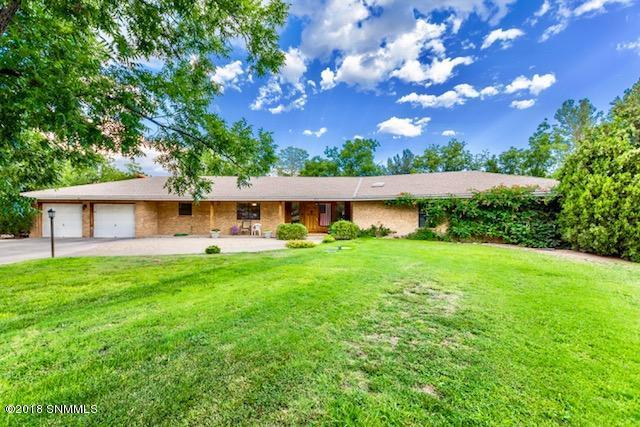 164 Los Nogales Drive, Las Cruces, NM 88001 (MLS #1806762) :: Steinborn & Associates Real Estate