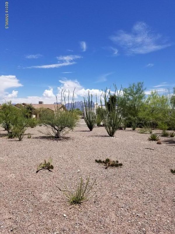 3650 Canyon Ridge, Las Cruces, NM 88011 (MLS #1807026) :: Steinborn & Associates Real Estate