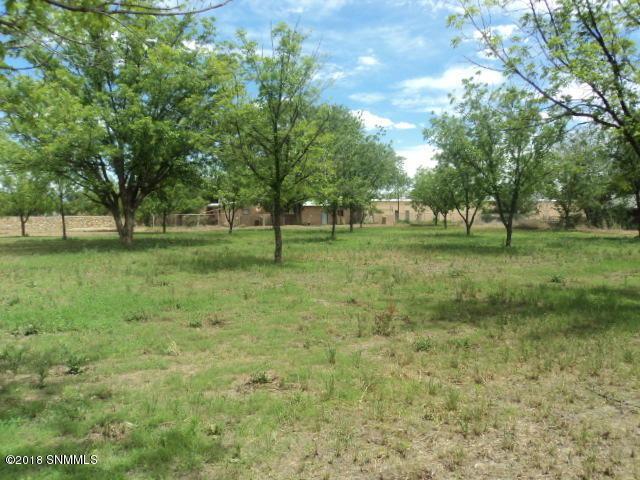 1940 Calle Pacana, Mesilla, NM 88046 (MLS #1807229) :: Steinborn & Associates Real Estate