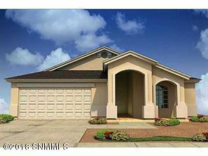 870 Holly Park Avenue, Santa Teresa, NM 88008 (MLS #1807417) :: Steinborn & Associates Real Estate