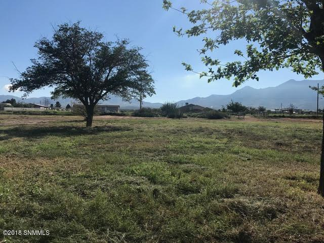 6835 Mac Arthur Road, Las Cruces, NM 88012 (MLS #1807472) :: Steinborn & Associates Real Estate