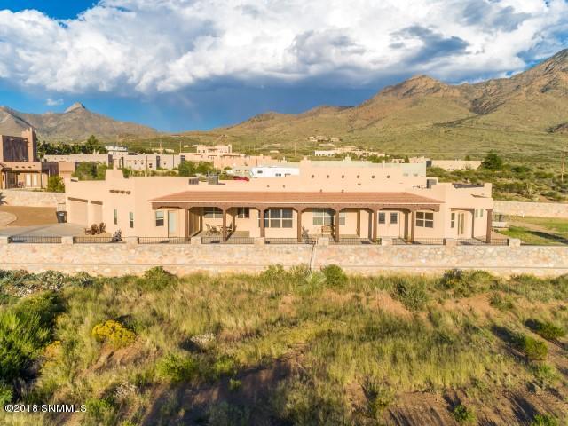 15234 Space Murals Lane, Las Cruces, NM 88011 (MLS #1807479) :: Steinborn & Associates Real Estate
