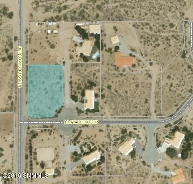 15115 Los Vaqueros Drive, Las Cruces, NM 88011 (MLS #1807778) :: Steinborn & Associates Real Estate