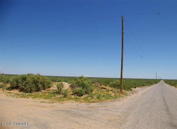 000 San Carlos - Photo 1