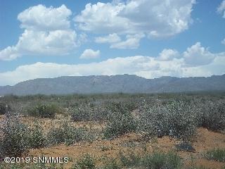 000* Barksdale Loop, Las Cruces, NM 88012 (MLS #1900729) :: Steinborn & Associates Real Estate