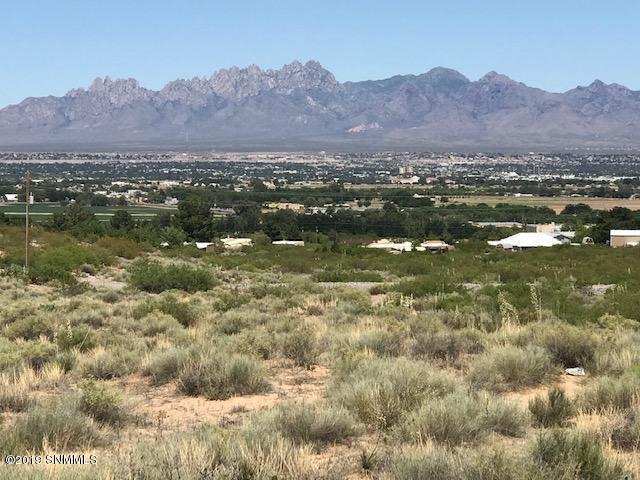 5950 Quesenberry Lane, Las Cruces, NM 88007 (MLS #1901522) :: Arising Group Real Estate Associates