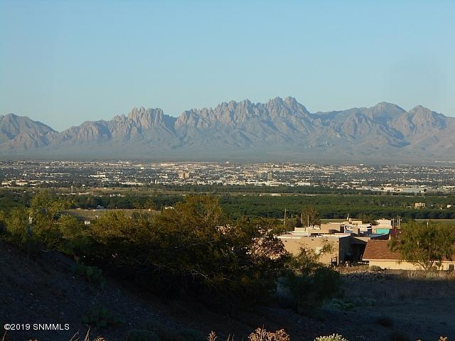 523 Larkspur, Las Cruces, NM 88007 (MLS #1901850) :: Steinborn & Associates Real Estate