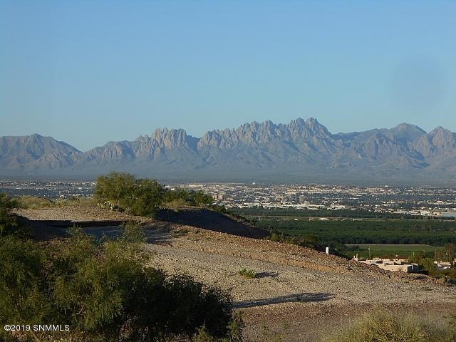 465 Ruby Hills Court, Las Cruces, NM 88007 (MLS #1901854) :: Steinborn & Associates Real Estate