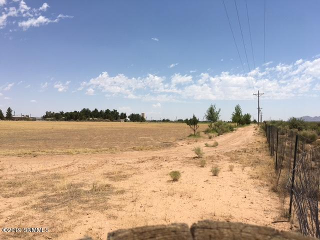 985 W Wicker Road, Chaparral, NM 88081 (MLS #1901960) :: Steinborn & Associates Real Estate