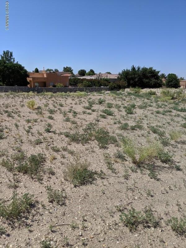 2804 Maddox Loop, Las Cruces, NM 88011 (MLS #1902038) :: Steinborn & Associates Real Estate