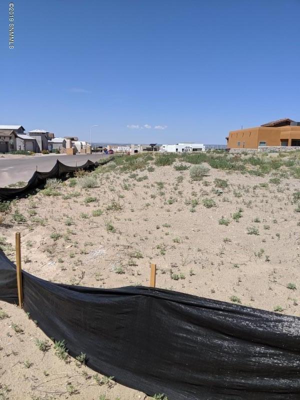 2875 Maddox Loop, Las Cruces, NM 88011 (MLS #1902042) :: Steinborn & Associates Real Estate