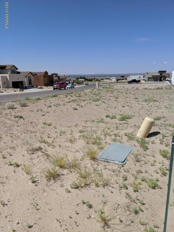 2901 Bink Place, Las Cruces, NM 88011 (MLS #1902056) :: Steinborn & Associates Real Estate