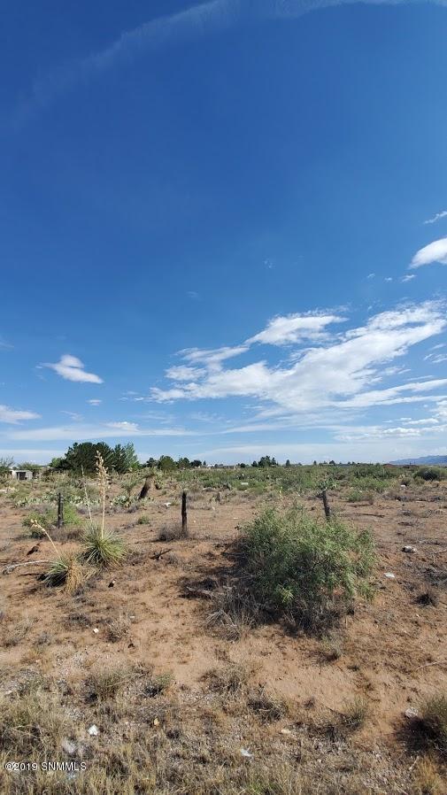 525 Oasis Drive, Chaparral, NM 88081 (MLS #1902240) :: Steinborn & Associates Real Estate