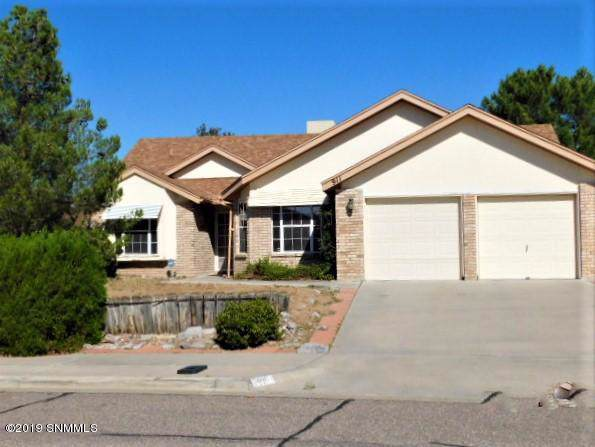 911 Stagecoach Drive, Las Cruces, NM 88011 (MLS #1902884) :: Steinborn & Associates Real Estate