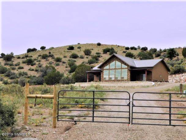 179 Berrenda Road, Hillsboro, NM 88042 (MLS #1902898) :: Steinborn & Associates Real Estate
