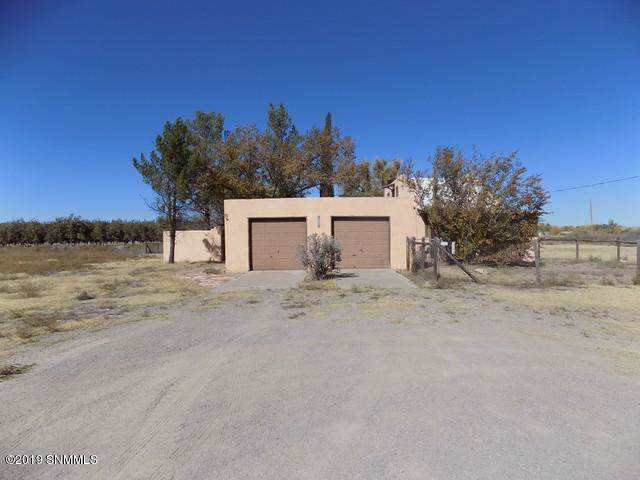 4290 Libra Drive, Las Cruces, NM 88007 (MLS #1903166) :: Steinborn & Associates Real Estate