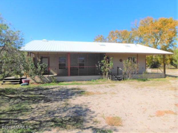 324 Animas Creek Rd., Caballo, NM 87931 (MLS #1903190) :: Steinborn & Associates Real Estate