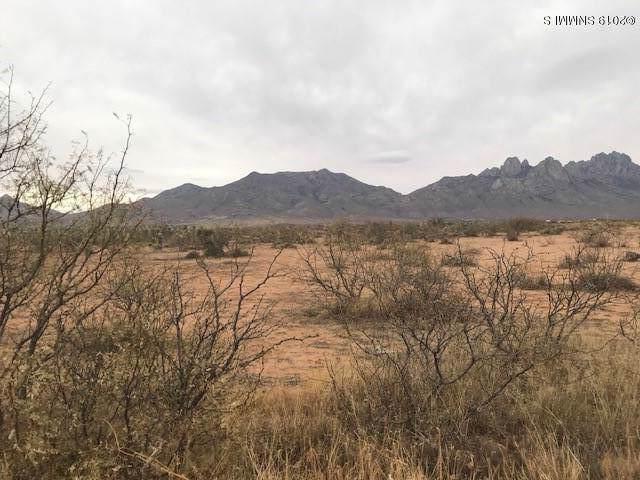 4980 Balsam Road, Las Cruces, NM 88011 (MLS #1903296) :: Arising Group Real Estate Associates