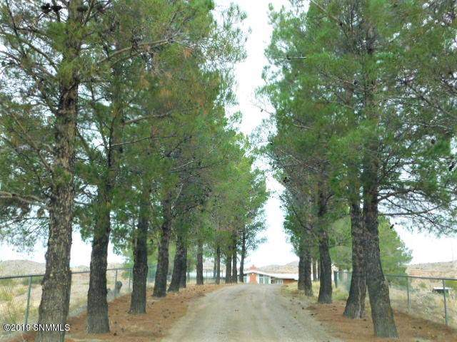 9 Mud Canyon Road, Truth Or Consequences, NM 87901 (MLS #1903376) :: Arising Group Real Estate Associates