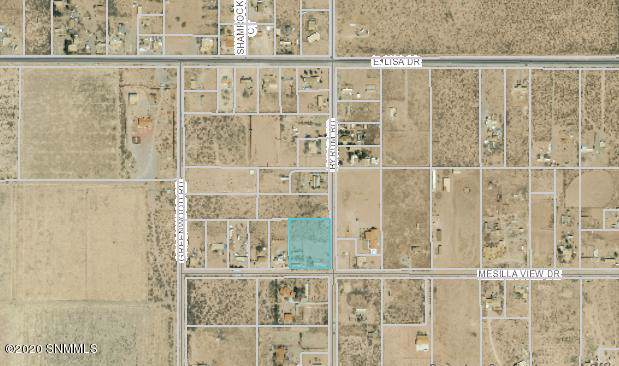 512 Byrum Road, Chaparral, NM 88081 (MLS #2000016) :: Steinborn & Associates Real Estate